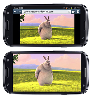 Interfacing with Video on Mobile Browsers | JW Player
